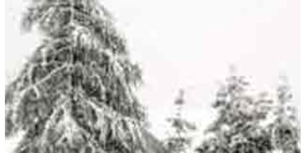 Tiroler im Hochgebirge erfroren