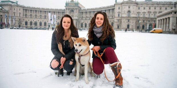 Wann kommt der erste Schnee nach Wien?