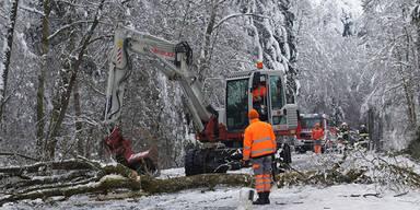 Größtes Schnee-Chaos des Jahrhunderts
