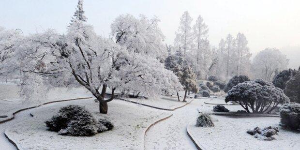 Norditalien erstickt im Schnee