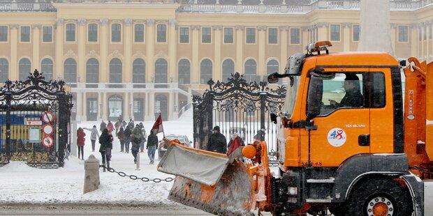 Wiens Schneeräumer im Großeinsatz