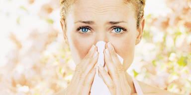 Hab ich eine Erkältung oder Heuschnupfen?