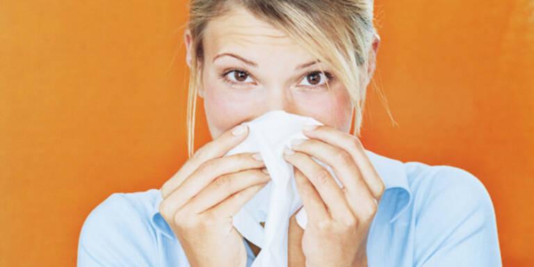schnupfen, krank, verkühlt, Erkältung, erkältet, Grippe, schneuzen, Taschentuch