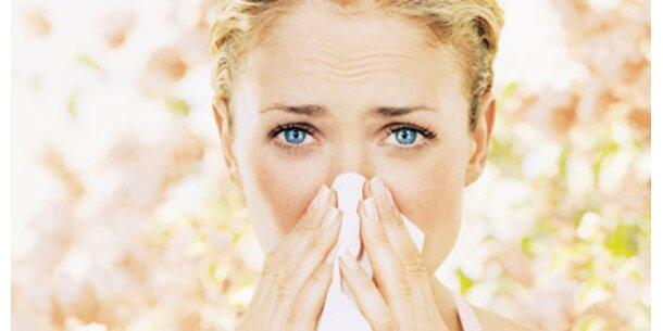 Allergisch auf Stress
