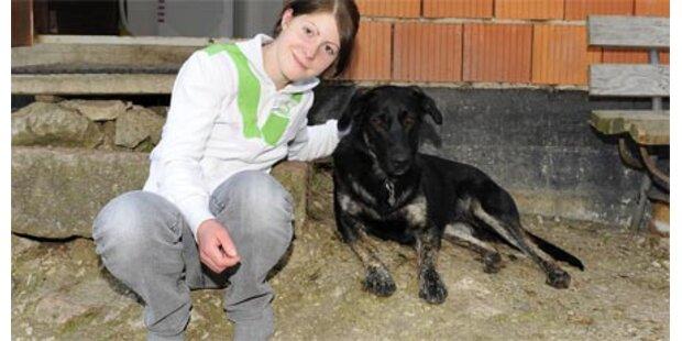 Frau und Hund vor Ertrinken gerettet
