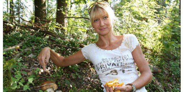 Kontrolleure machen Jagd auf Pilzsammler
