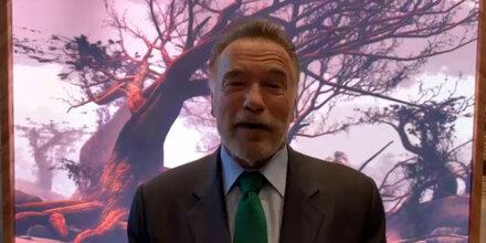 Schwarzenegger gratuliert Kurz zu Plastikverbot