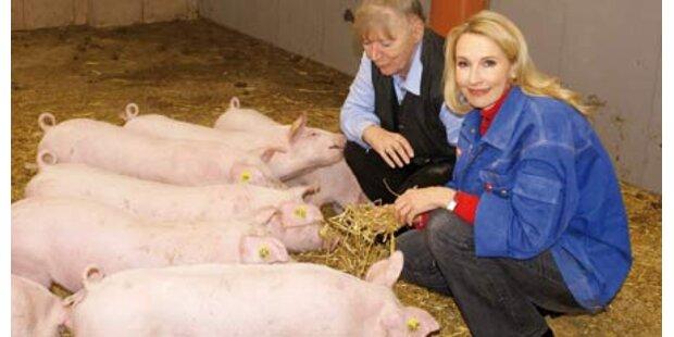 Opernstar als Schweine-Patin
