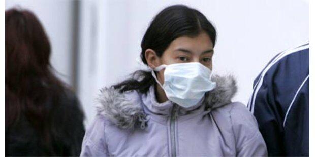 Drei neue Schweinegrippe-Verdachtsfälle