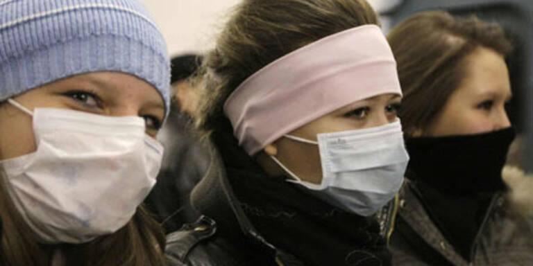 Vier Tote wegen Schweinegrippe