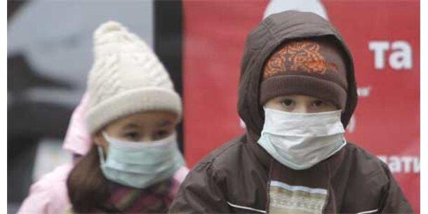 Schweinegrippe - Noch keine Entwarnung