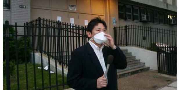 Schweinegrippe erreicht New York