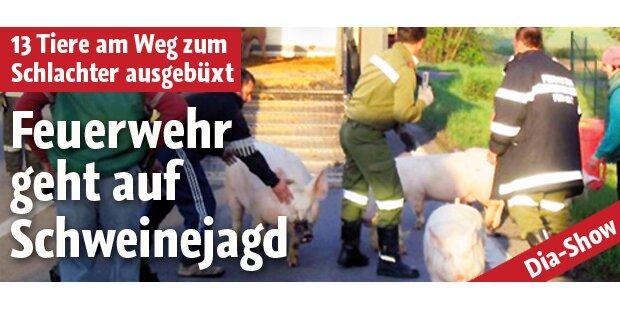 Steirische Feuerwehr auf