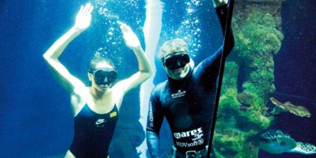 Schwimmstar Nadarajah taucht mit Haien