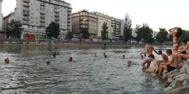 Wirbel um Donaukanal als Schwimmbad