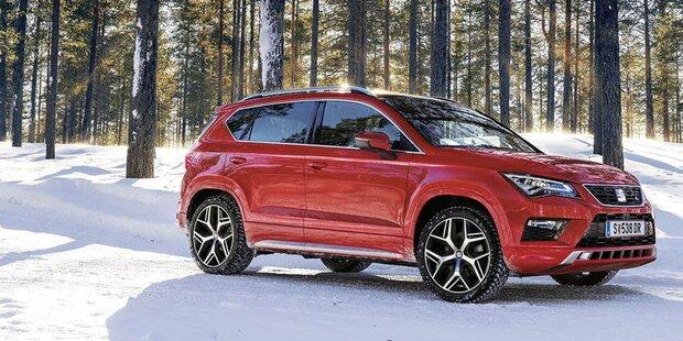 Neuzulassungen: VW vor Skoda und Seat