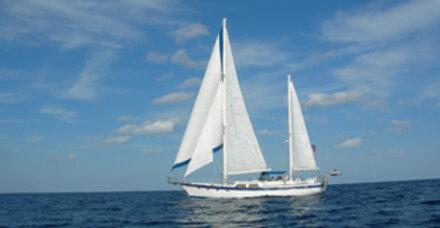 Segelboot karibik  1 Tonne Kokain auf Segelboot in Karibik gefunden - Ausdrucken ...