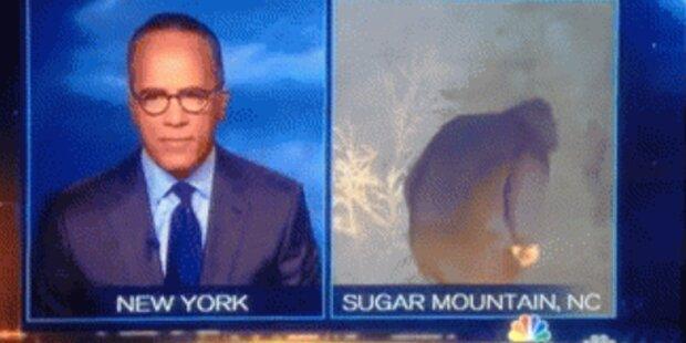 TV-Moderator live beim Pinkeln erwischt