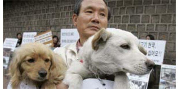 Seoul legalisiert Hunde-Verzehr