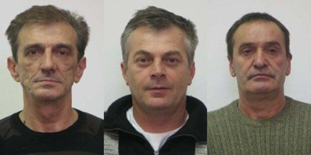 Drei Serieneinbrecher in Wien gefasst