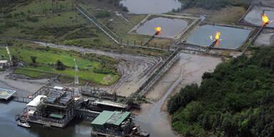 Shell hat über Niger-Delta gelogen