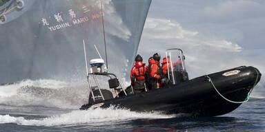 Umweltschützer stoppen Walfänger