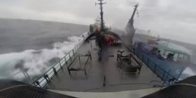 Kollision zwischen Aktivisten und Walfängern
