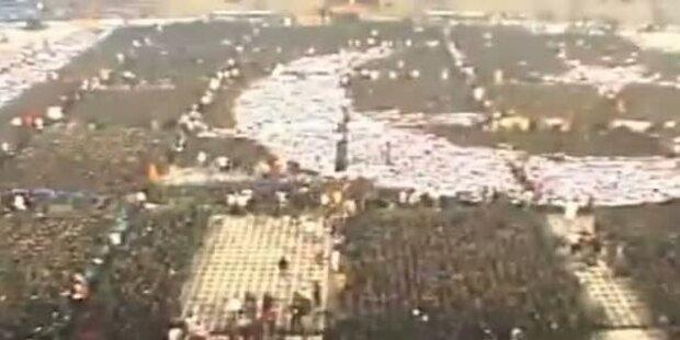 Weltrekord: Größte