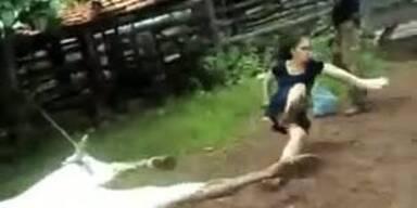Karate-Kuh haut menschliche Geburtshelferin um