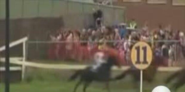 Rennpferd springt in Zuschauermenge