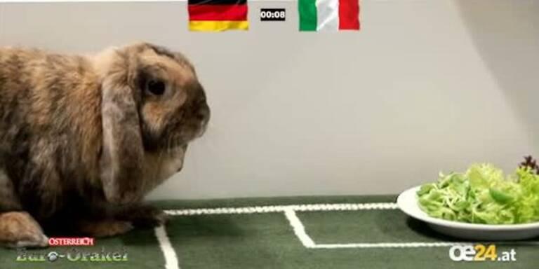Hase Tigger sagt EURO-Sieger voraus
