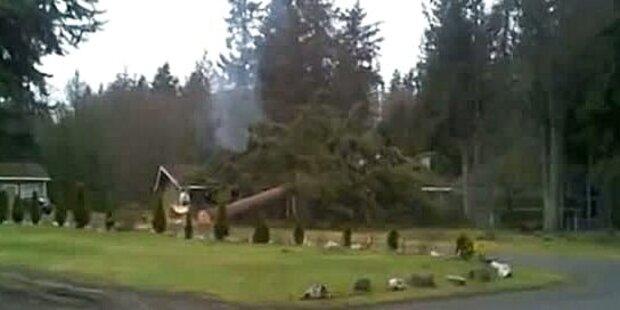 Mann fällt Baum: Baum kracht auf Haus