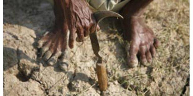 Selbsternanntem Heiligen in Indien Bein abgehackt