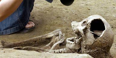 skelett_