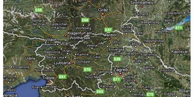 Erste Schweinegrippe-Tote in Slowenien