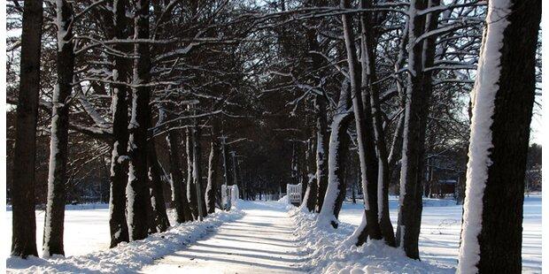 Schneeräumung: Tipps rund um Eis und Schnee
