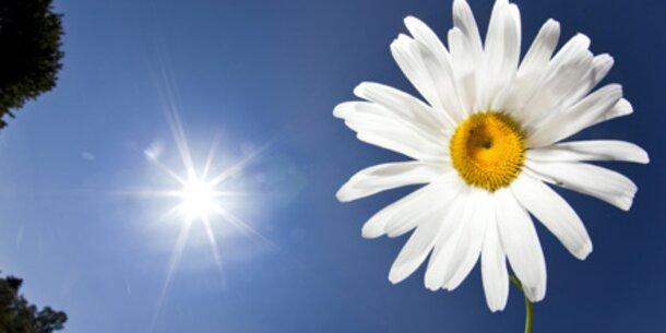 Ozon-Check: Sind Sie<br /> gefährdet?