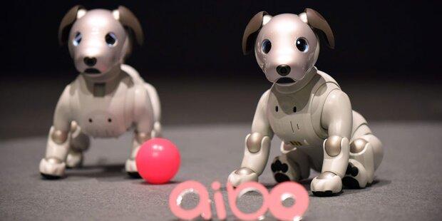 Sonys Roboterhund Aibo kehrt zurück