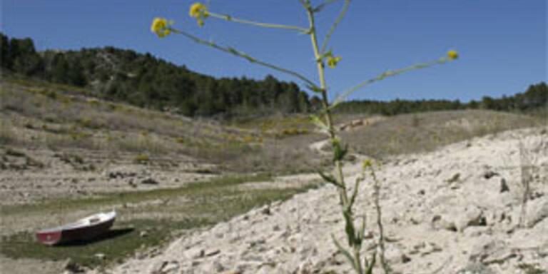 Barcelona leidet unter akutem Wassermangel