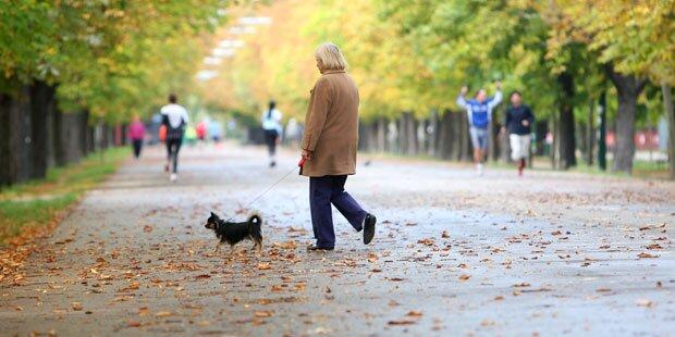 Zu-Fuß-Gehen liegt im Trend