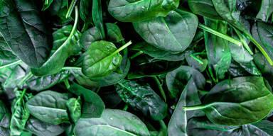 Ist Spinat-Aufwärmen wirklich gefährlich?