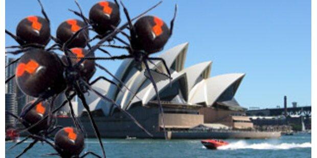Spital schließt wegen Spinnenplage Down Under