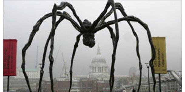 Fast jeder Dritte hat Angst vor Spinnen