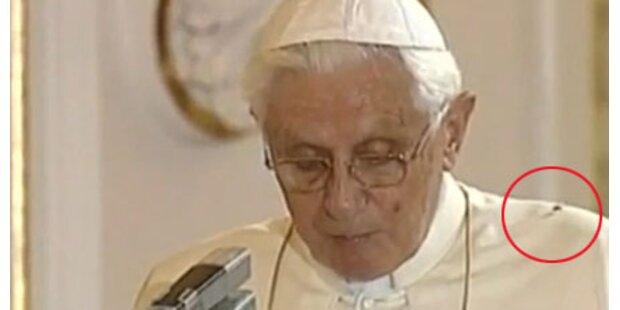 Spinne ist Star bei Papst-Besuch