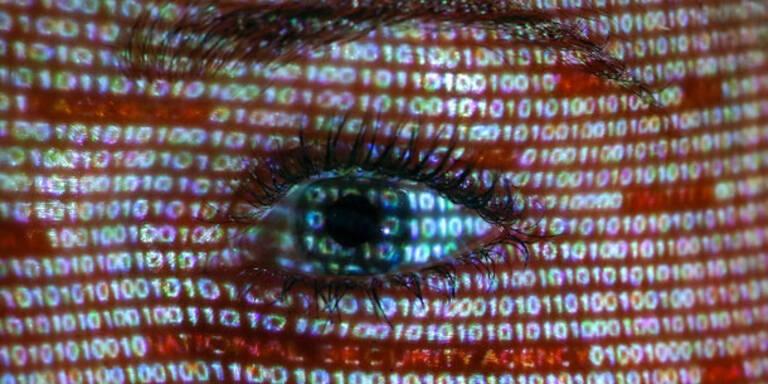 Wikileaks-Hilfsangebot: IT-Riesen skeptisch