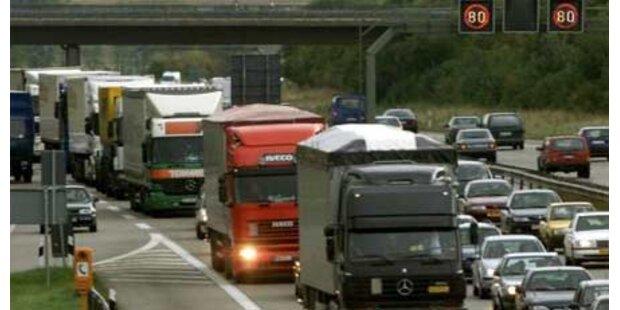 Hund legt deutsche Autobahn lahm