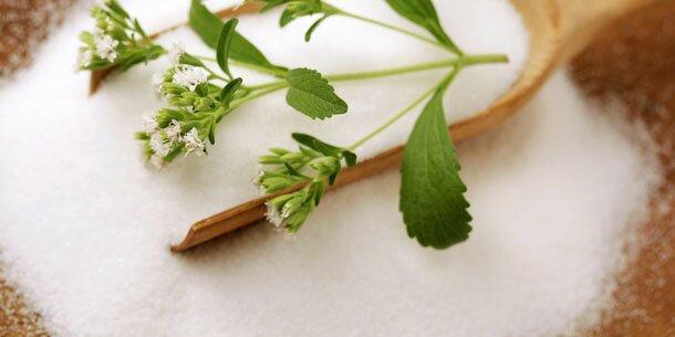 zucker stevia zuckerersatz die wichtigsten infos. Black Bedroom Furniture Sets. Home Design Ideas