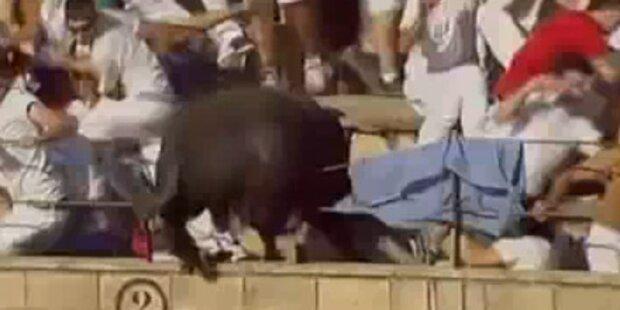 40 Verletzte nach 10-Meter-Stier-Sprung