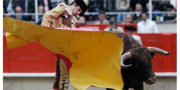 Spaniens Stiere unter Doping-Verdacht