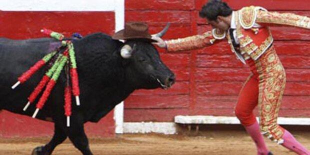 Katalonien verbietet Stierkämpfe